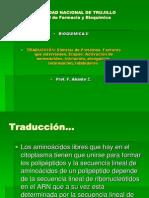 Traduccion Arn Sintesis Proteinas