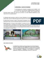 GuiaBreedingPPL.pdf