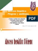ABSCESO HEPATICO01