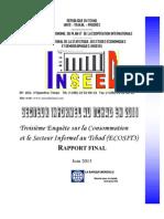 Ecosit3_rapport Secteur Informel Final_tchad 2011_version Publiee