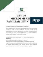 LEY DE MICROEMPRESA FAMILIAR LEY Nº 19749