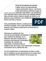 plantas de interior.pdf