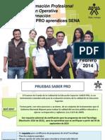 Prueba Saber Pro 2014