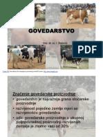 Uzgoj i Proizvodnja Goveda