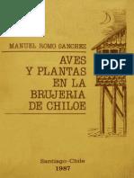 Aves Chiloé