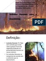 incendios florestais
