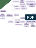 Mapa Conceptual Asma