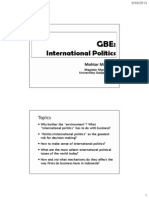 6. International Political Environment MMD - Feb 2014