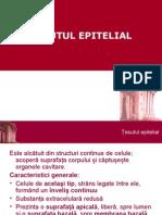 epitelial_1