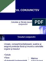 conjunctiv_1