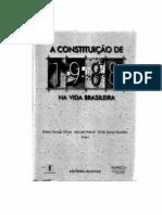 Renato Lessa - Constituicao Brasileira