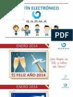 Boletín Enero 2014 STTs