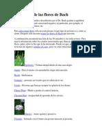 Guía y uso de las flores de Bach