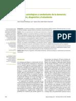 Paper Demencia 2012