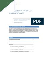05 La Tecnologc3ada Sig en La Organizacic3b3n