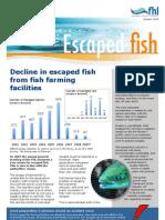 Factsheet Escaped fish