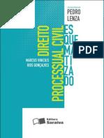 Direitoprocessualcivilesquematizado 1edio Ano2012 130214140352 Phpapp02 (1)