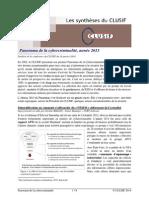 CLUSIF - Panorama de la cybercriminalité 2013