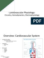Cardiovascular+Physiology Circuitry%2C+Hemodynamics%2C+Electrophysiology
