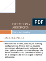 Digestion y Absorcion