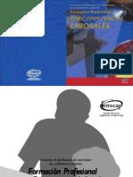 Modulo1 Formación Profesional por Competencias Labores