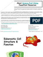 Eukaryotic Cell Structure Function Lecture PowerPoint VCBC