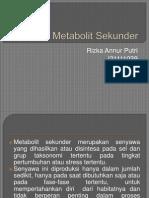 Metabolit Sekunder