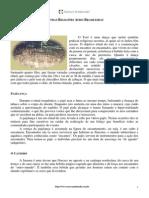 03 - Religiões de raíz Africana.pdf