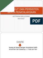 PP DIARE