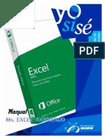 Manual MS Excel 2013 Avanzado (1)