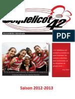 2013-PlaquetteAG
