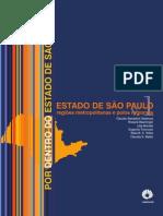 V01 Estado de São Paulo Regoões Metropolitanas e Polos Regionais