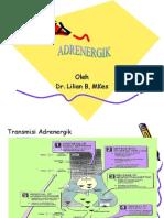 Adrenergik