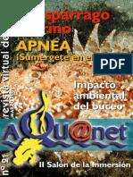 Aquanet 21