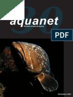 Aquanet 30