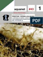 Aquanet 43