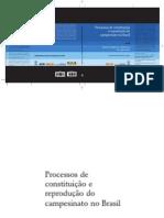 Processos de constituição e reprodução do campesinato no Brasil vol 2