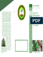 Triptico Cannabis Medicinal Editado