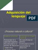 PSICOLINGÜÍSTICA (Power Adquisición del Lenguaje).ppt
