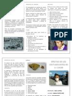 Efectos de Los Conaminantes en La Salud-fabian