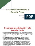 Consulta y Participación mix marina mth.pptx