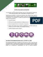 SOPORTE VITAL BÁSICO - Pediatrico