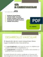 Embriologia Dr Aquino1