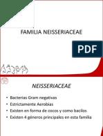 Familia Neisseriaceae