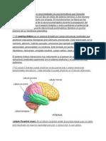 p.sicologia