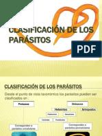 taxonomia parasitos