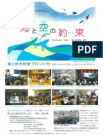 PSS Flyer