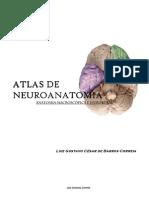 Atlas de neuroanatomia (fotográfico)