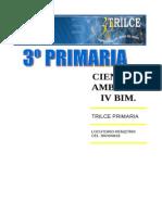C.A. IV BIM