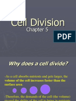 Cell Division 100